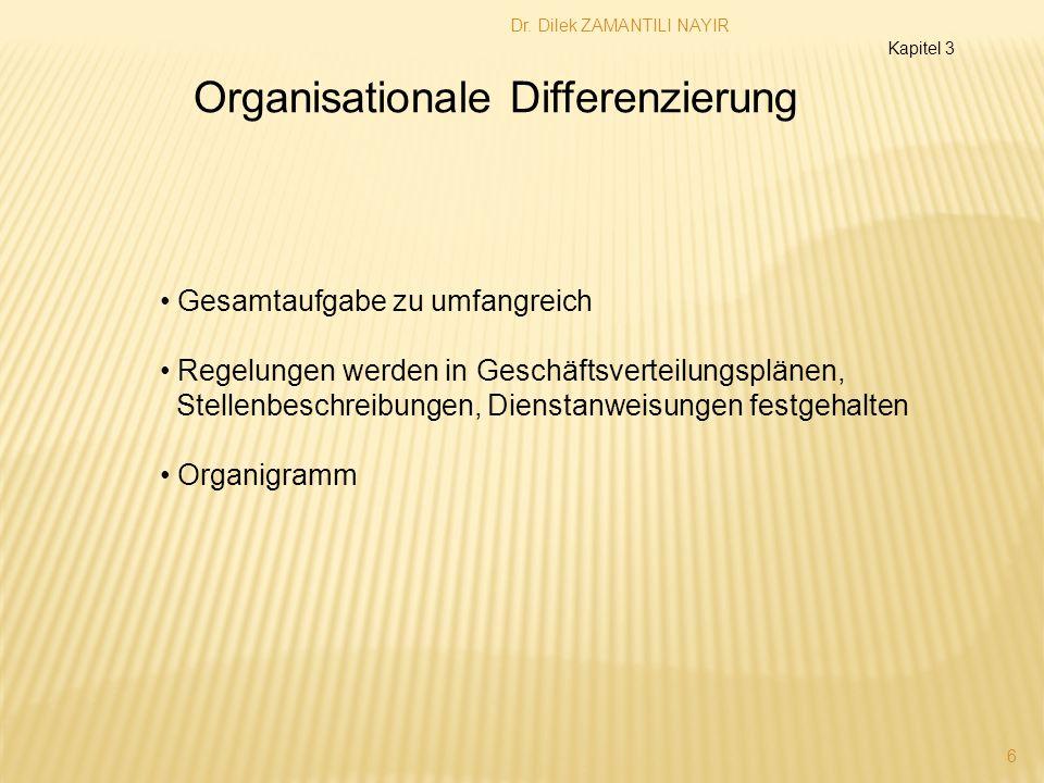 Organisationale Differenzierung