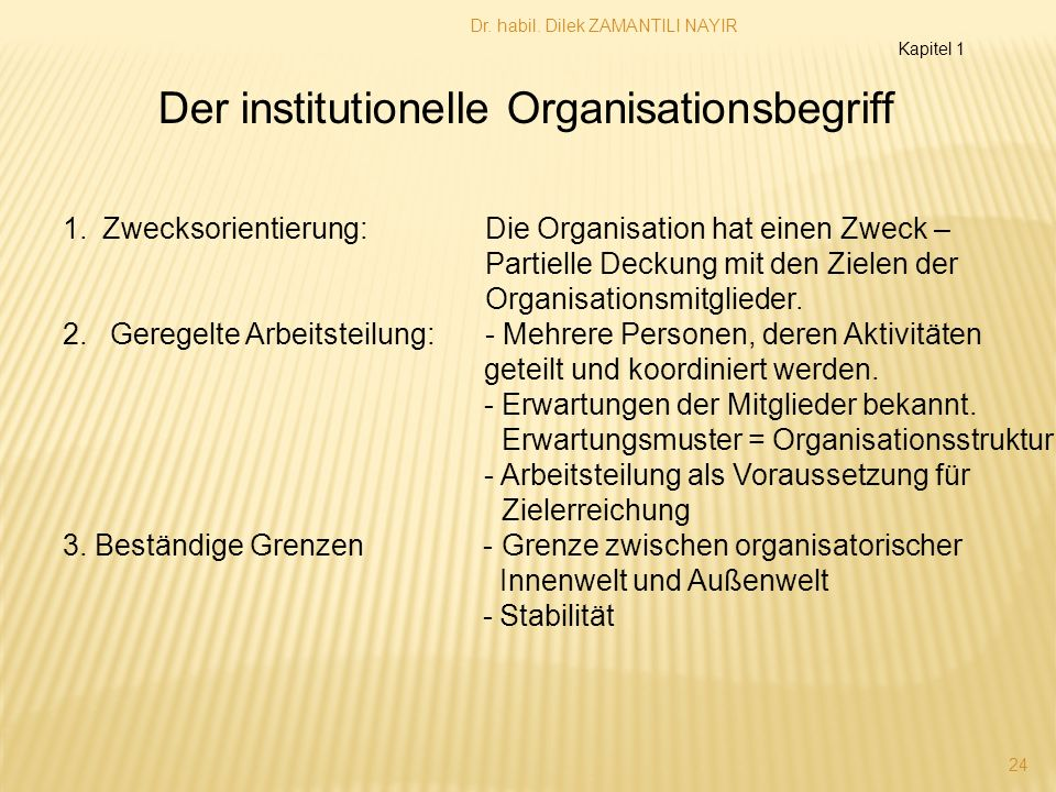 Der institutionelle Organisationsbegriff