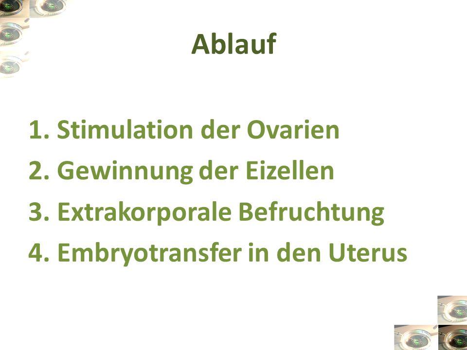 Ablauf 1. Stimulation der Ovarien 2. Gewinnung der Eizellen 3.