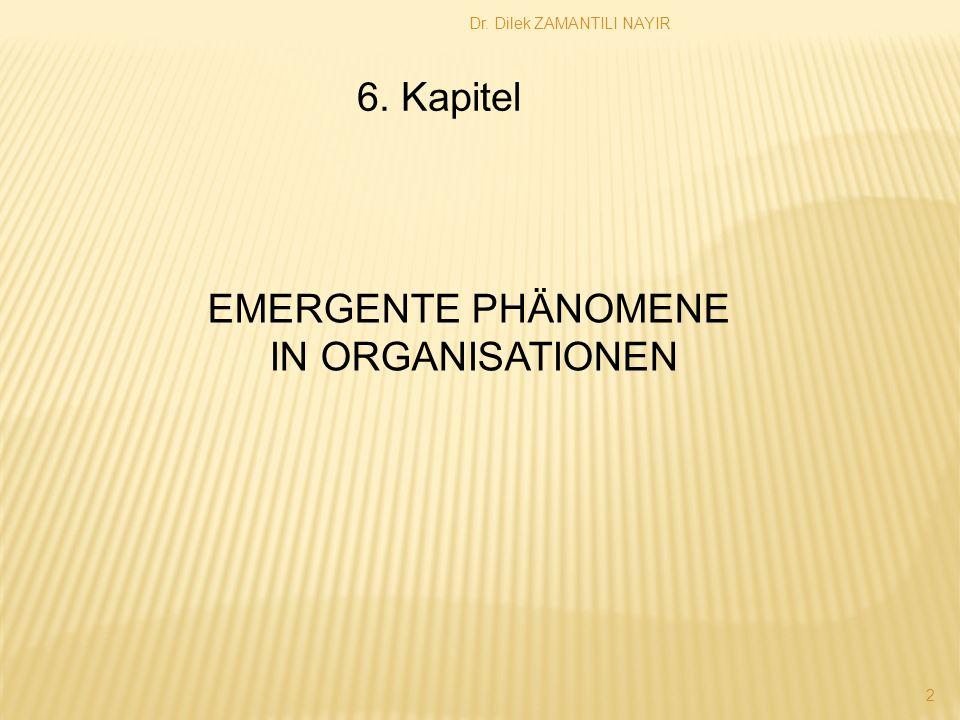 6. Kapitel EMERGENTE PHÄNOMENE IN ORGANISATIONEN