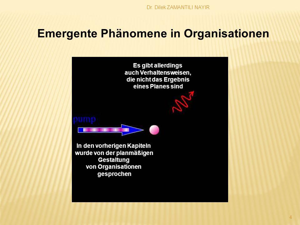 Emergente Phänomene in Organisationen