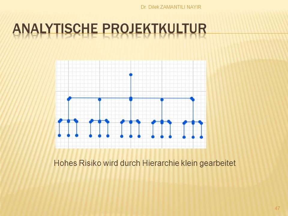 Analytische Projektkultur