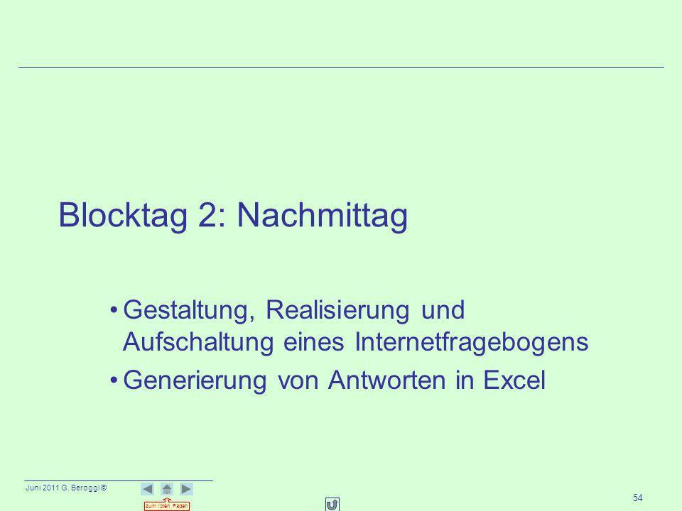 Blocktag 2: Nachmittag Gestaltung, Realisierung und Aufschaltung eines Internetfragebogens.