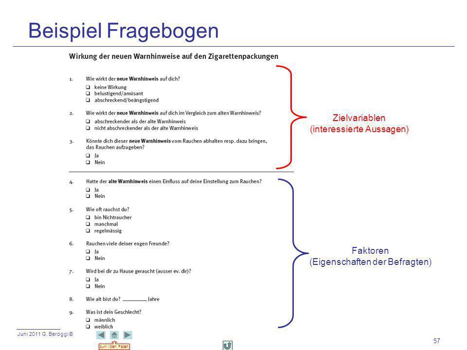 Beispiel Fragebogen Zielvariablen (interessierte Aussagen) Faktoren