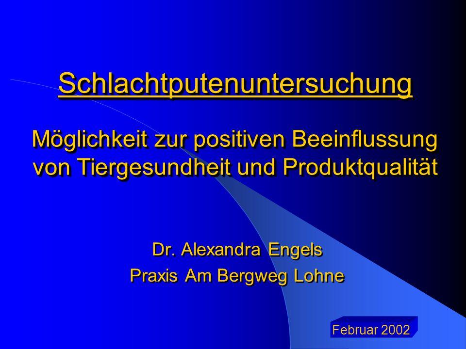 Dr. Alexandra Engels Praxis Am Bergweg Lohne