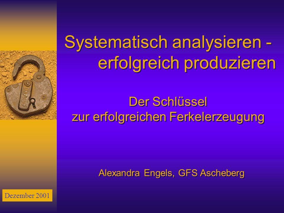 Alexandra Engels, GFS Ascheberg