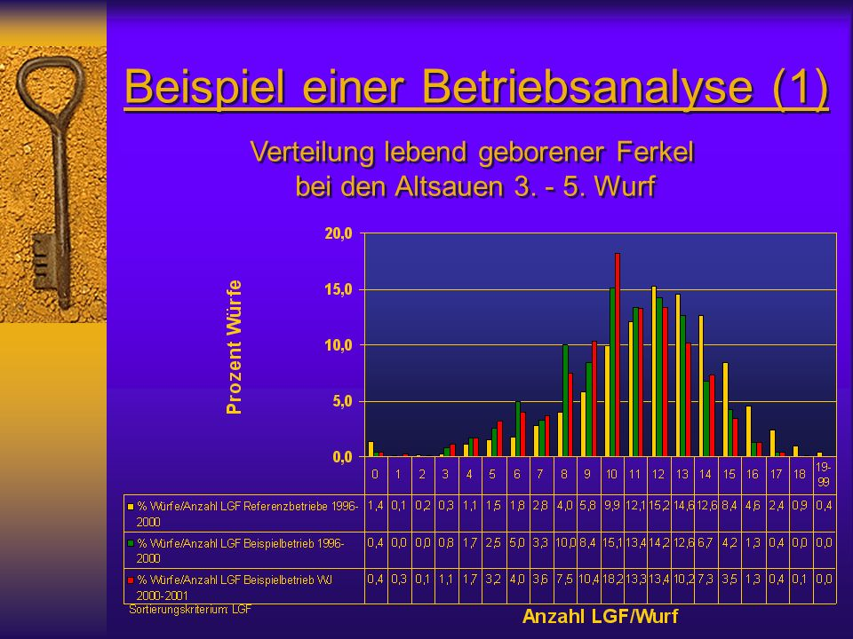 Beispiel einer Betriebsanalyse (1)