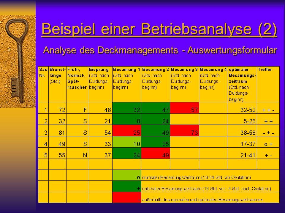 Beispiel einer Betriebsanalyse (2)