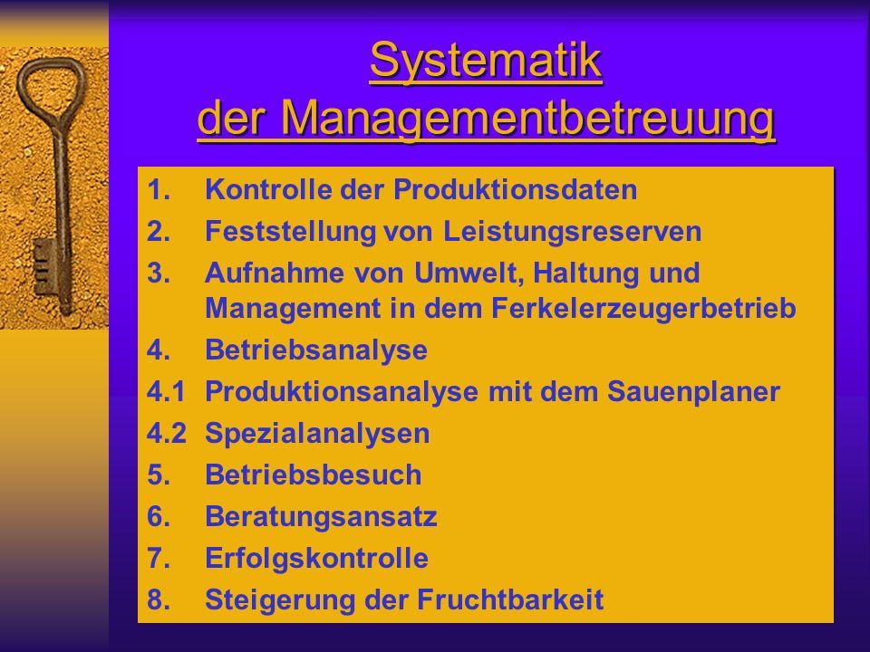 Systematik der Managementbetreuung