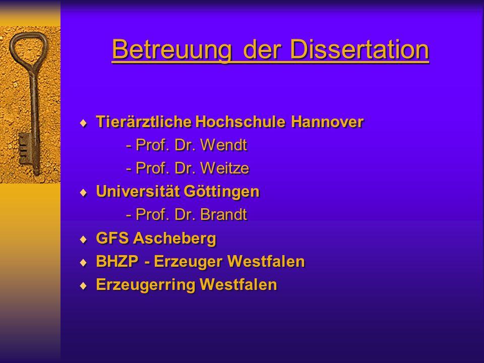 Betreuung der Dissertation