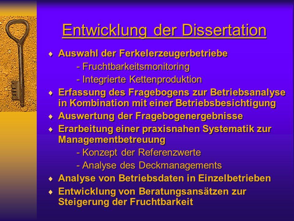 Entwicklung der Dissertation