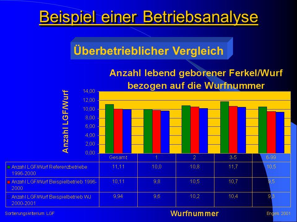 Beispiel einer Betriebsanalyse