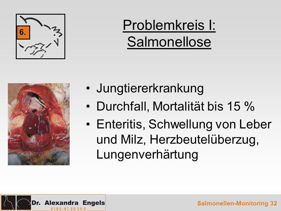 Problemkreis I: Salmonellose