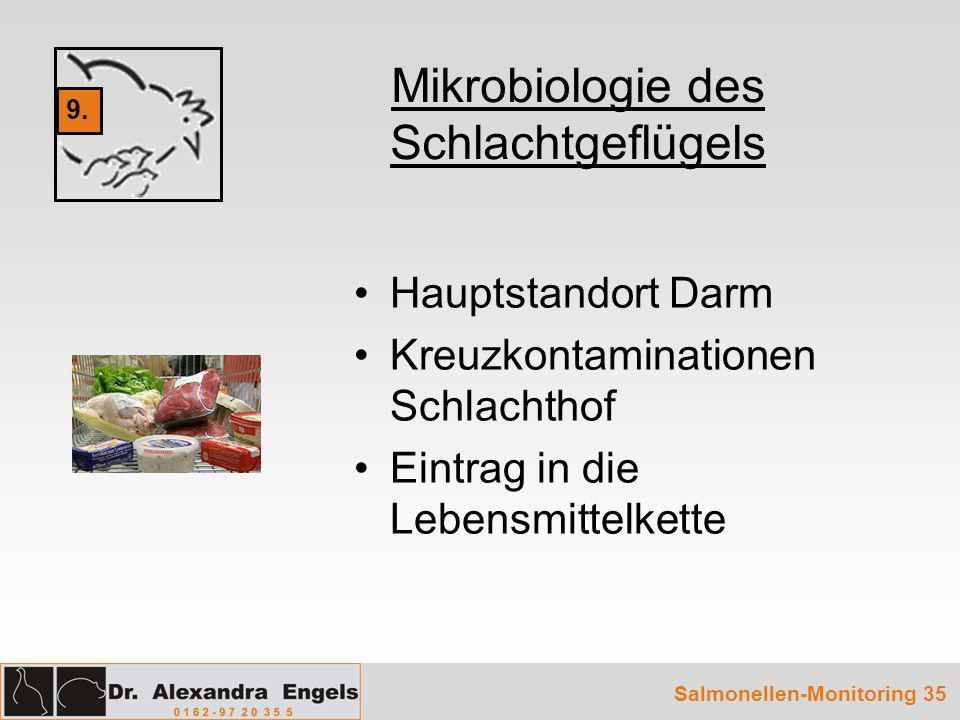 Mikrobiologie des Schlachtgeflügels