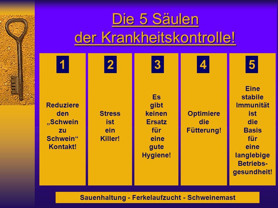Die 5 Säulen der Krankheitskontrolle!