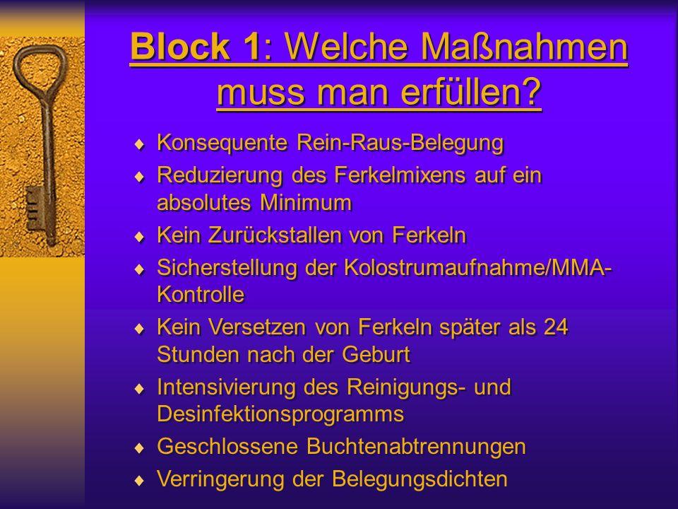 Block 1: Welche Maßnahmen muss man erfüllen