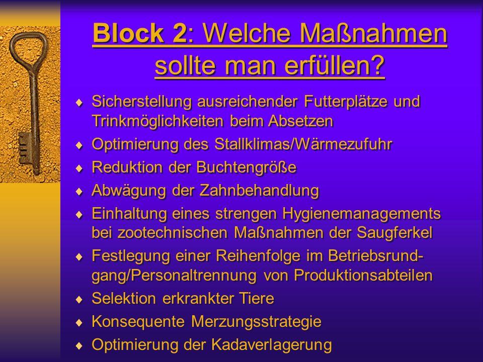 Block 2: Welche Maßnahmen sollte man erfüllen
