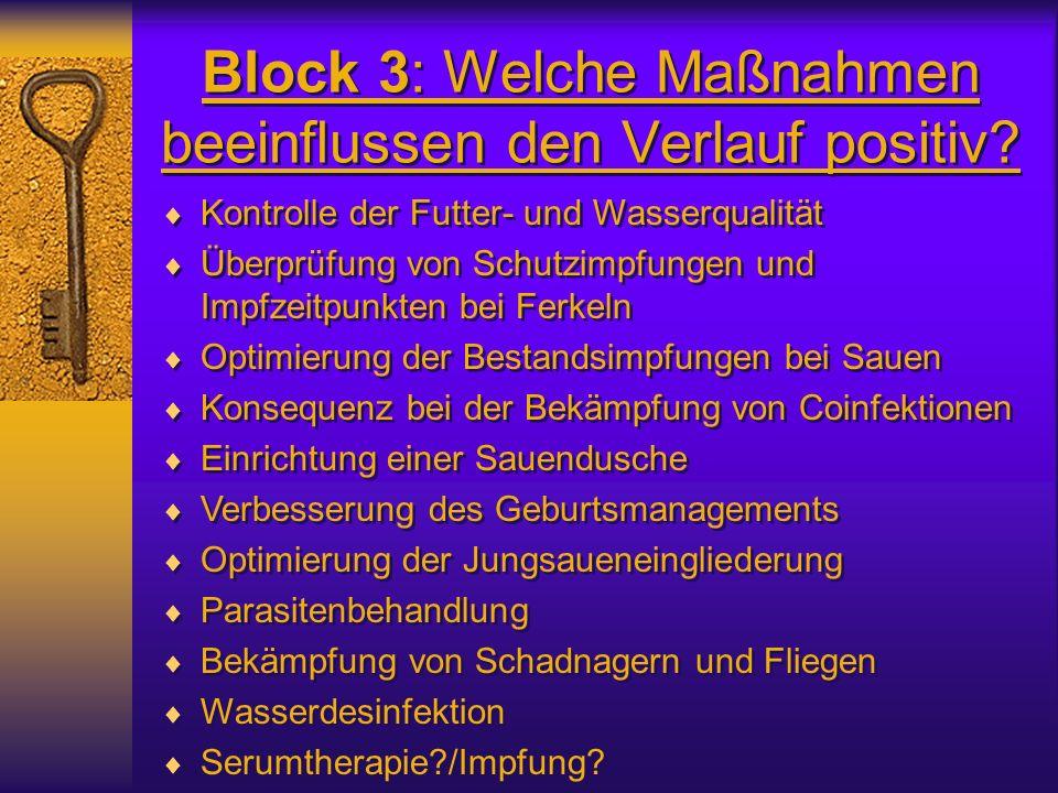 Block 3: Welche Maßnahmen beeinflussen den Verlauf positiv