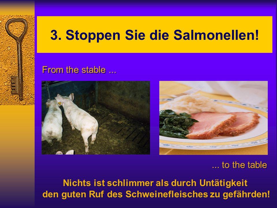 3. Stoppen Sie die Salmonellen!