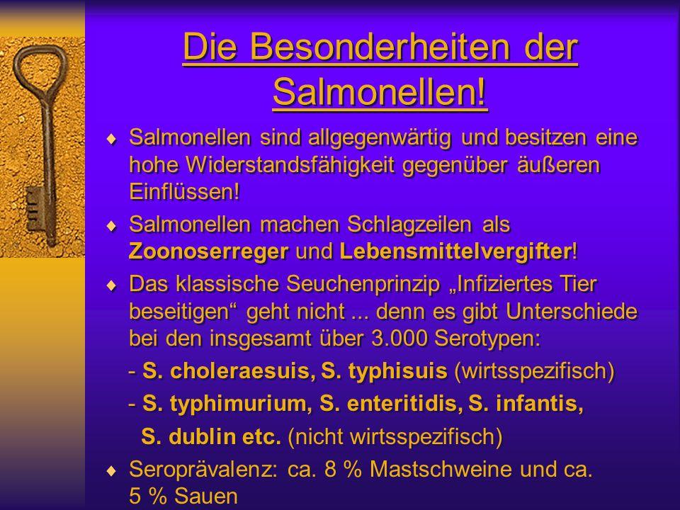 Die Besonderheiten der Salmonellen!
