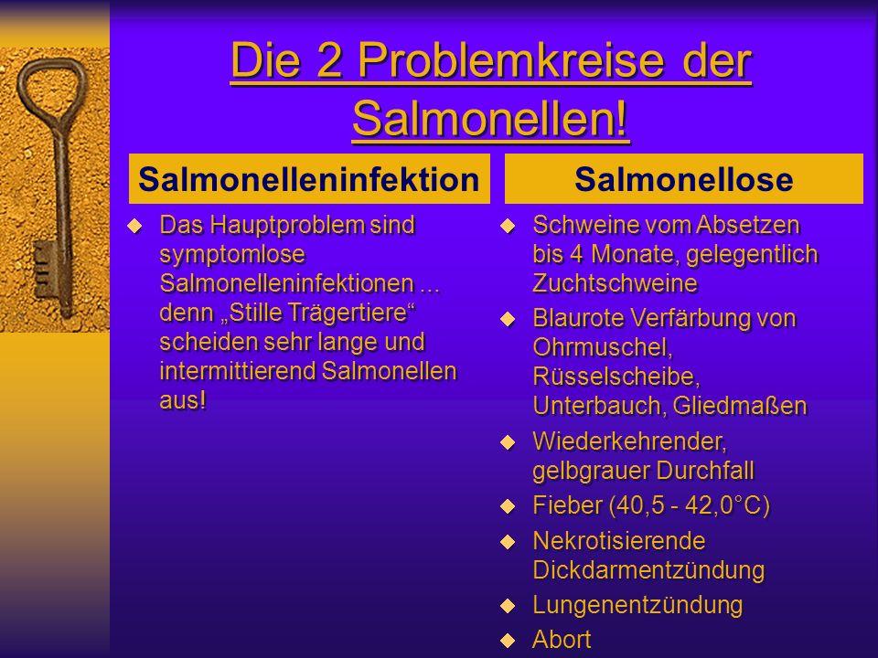 Die 2 Problemkreise der Salmonellen!