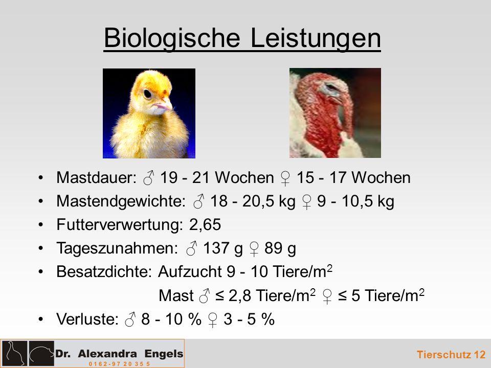 Biologische Leistungen