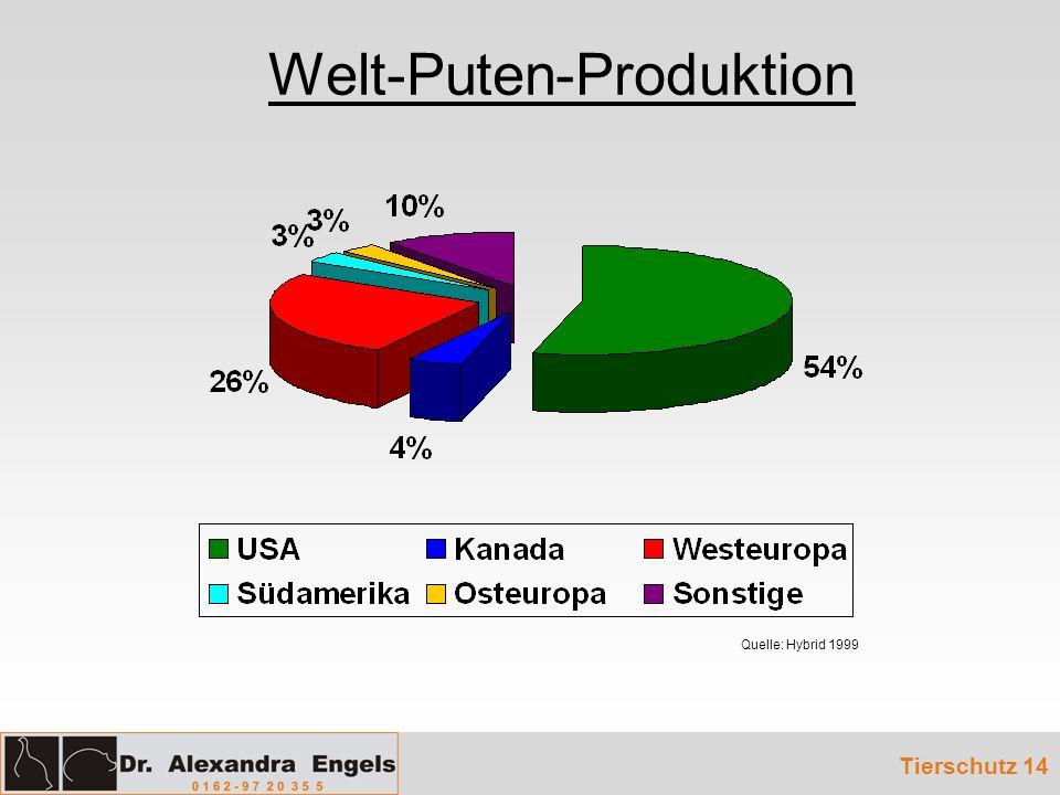 Welt-Puten-Produktion
