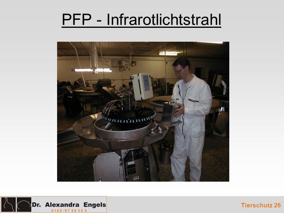 PFP - Infrarotlichtstrahl