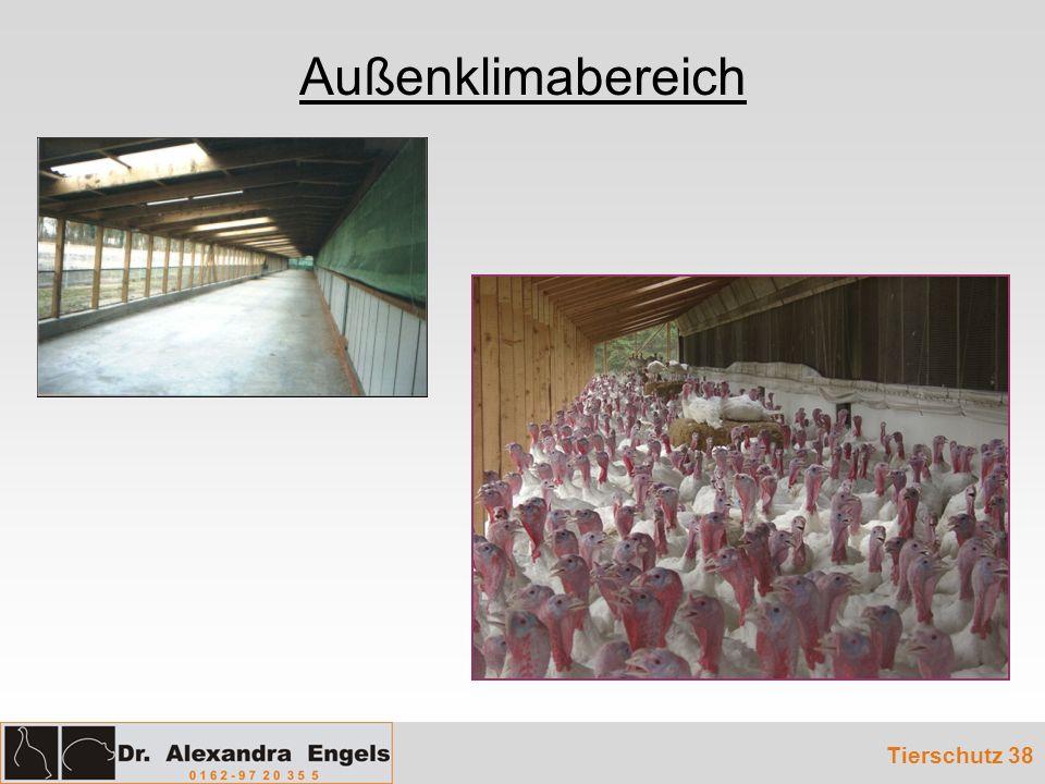 Außenklimabereich Tierschutz 38