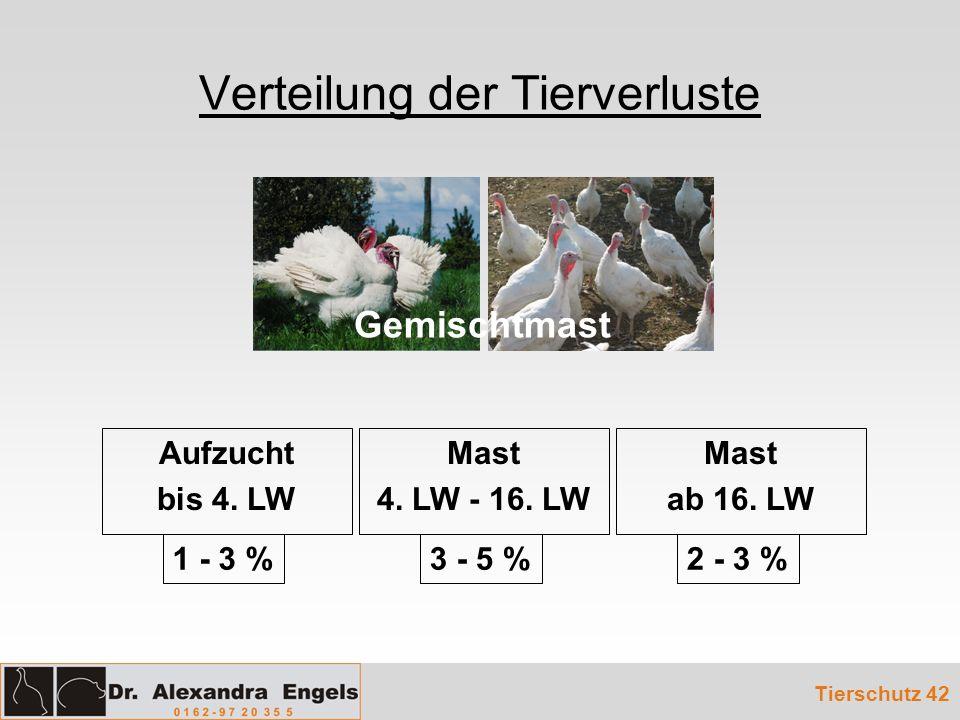 Verteilung der Tierverluste