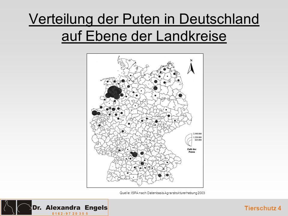 Verteilung der Puten in Deutschland auf Ebene der Landkreise