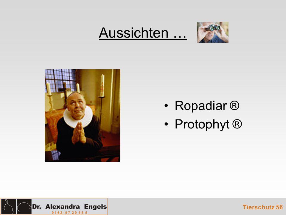 Aussichten … Ropadiar ® Protophyt ® Tierschutz 56