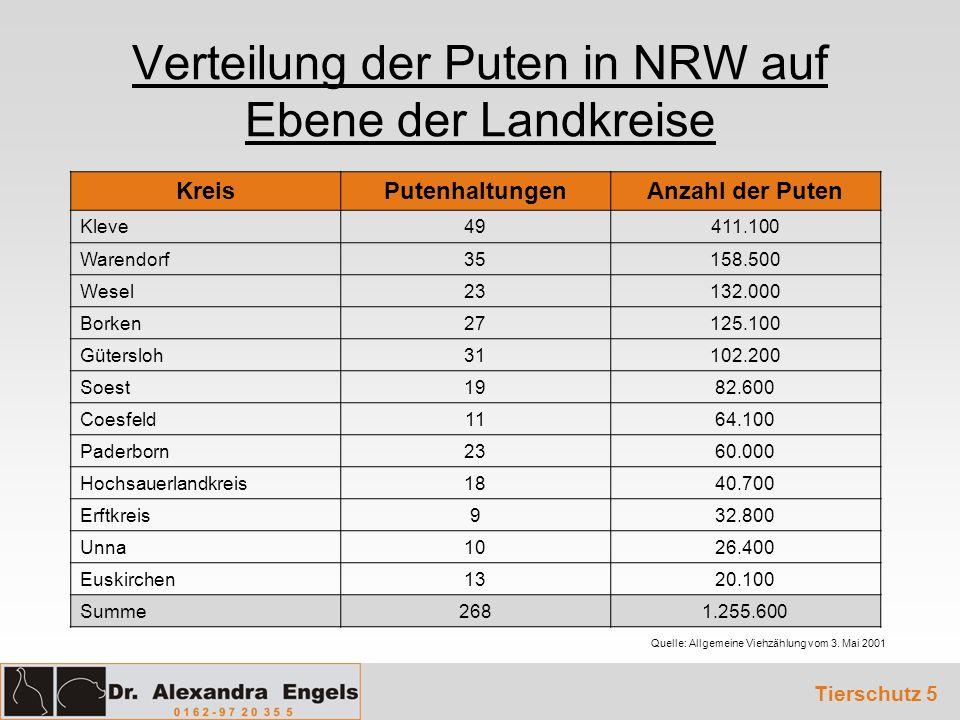 Verteilung der Puten in NRW auf Ebene der Landkreise