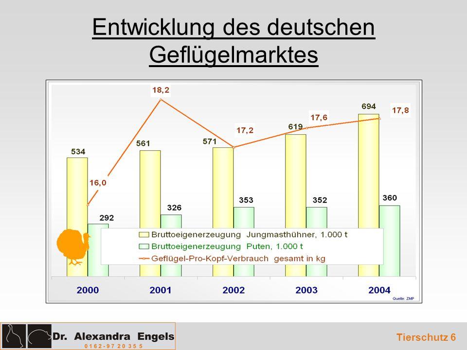 Entwicklung des deutschen Geflügelmarktes