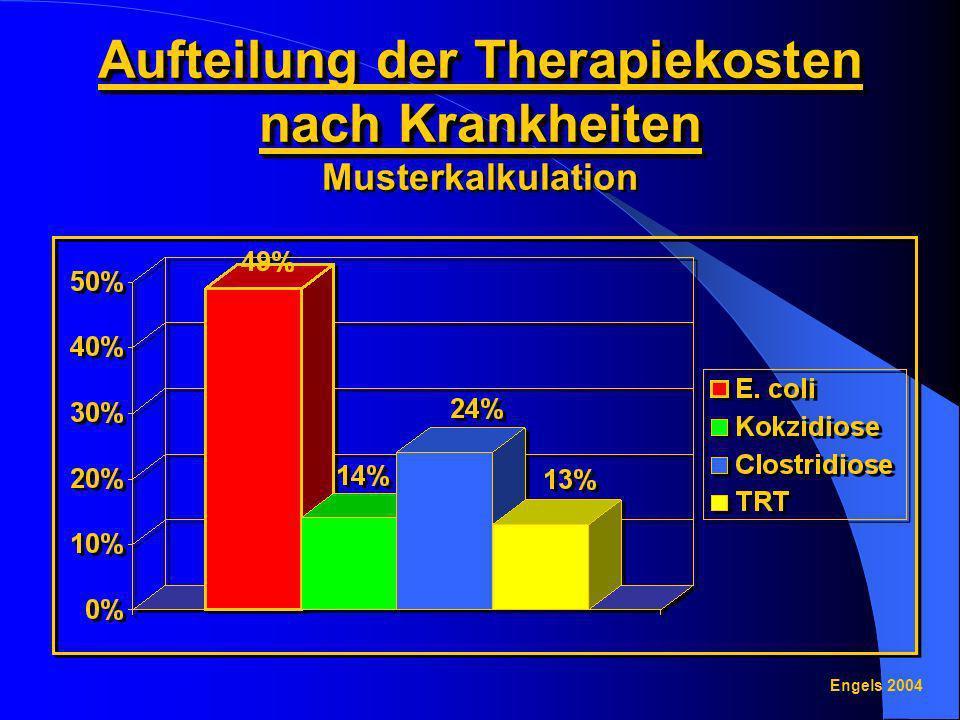 Aufteilung der Therapiekosten nach Krankheiten Musterkalkulation