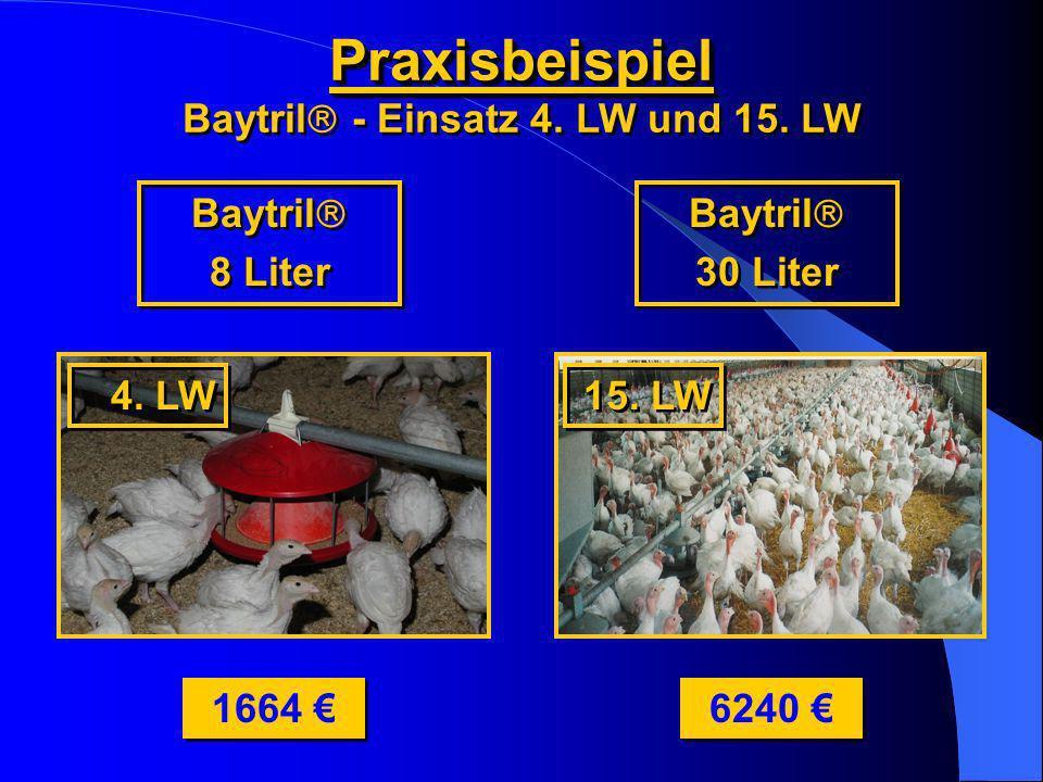 Baytril - Einsatz 4. LW und 15. LW