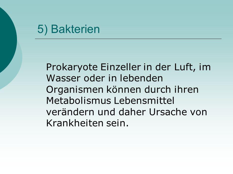 5) Bakterien