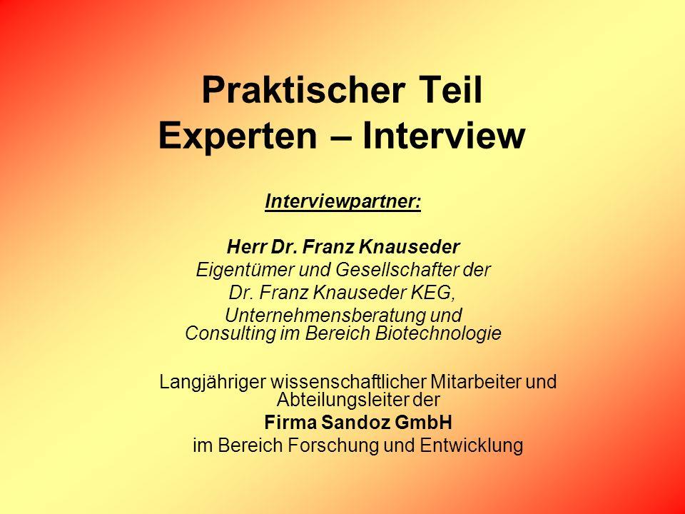 Praktischer Teil Experten – Interview