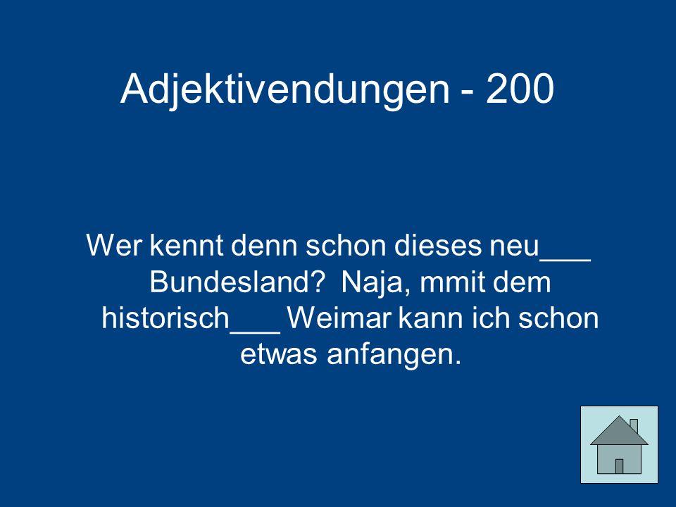 Adjektivendungen - 200 Wer kennt denn schon dieses neu___ Bundesland.