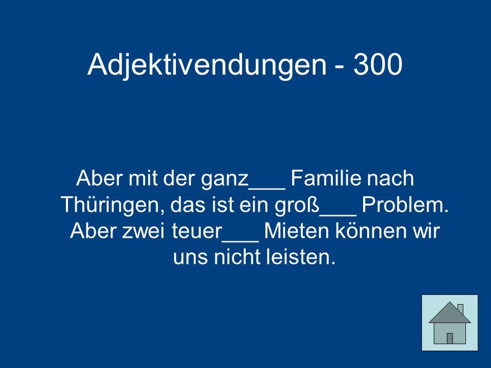 Adjektivendungen - 300
