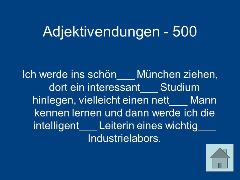 Adjektivendungen - 500