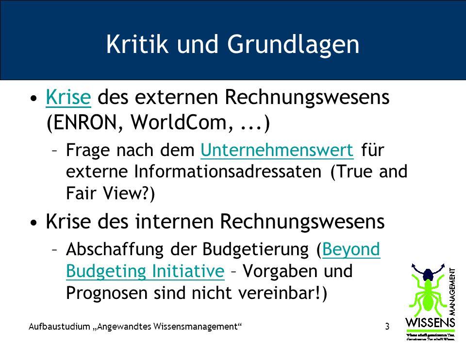 Kritik und Grundlagen Krise des externen Rechnungswesens (ENRON, WorldCom, ...)
