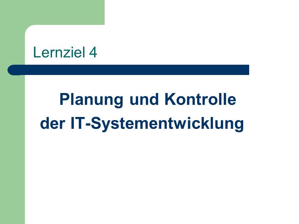 der IT-Systementwicklung