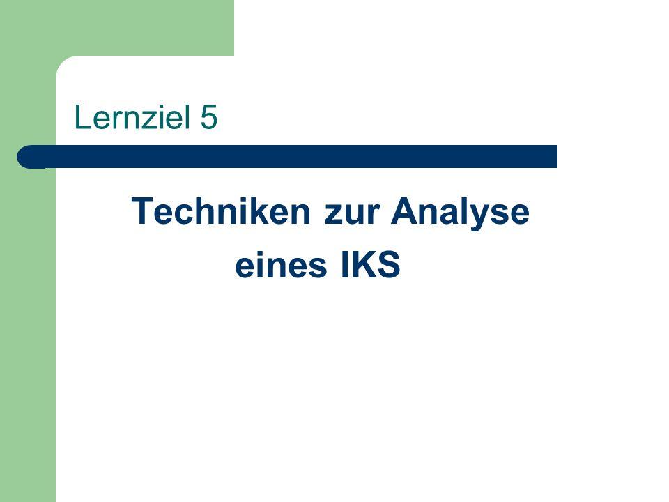 Techniken zur Analyse eines IKS