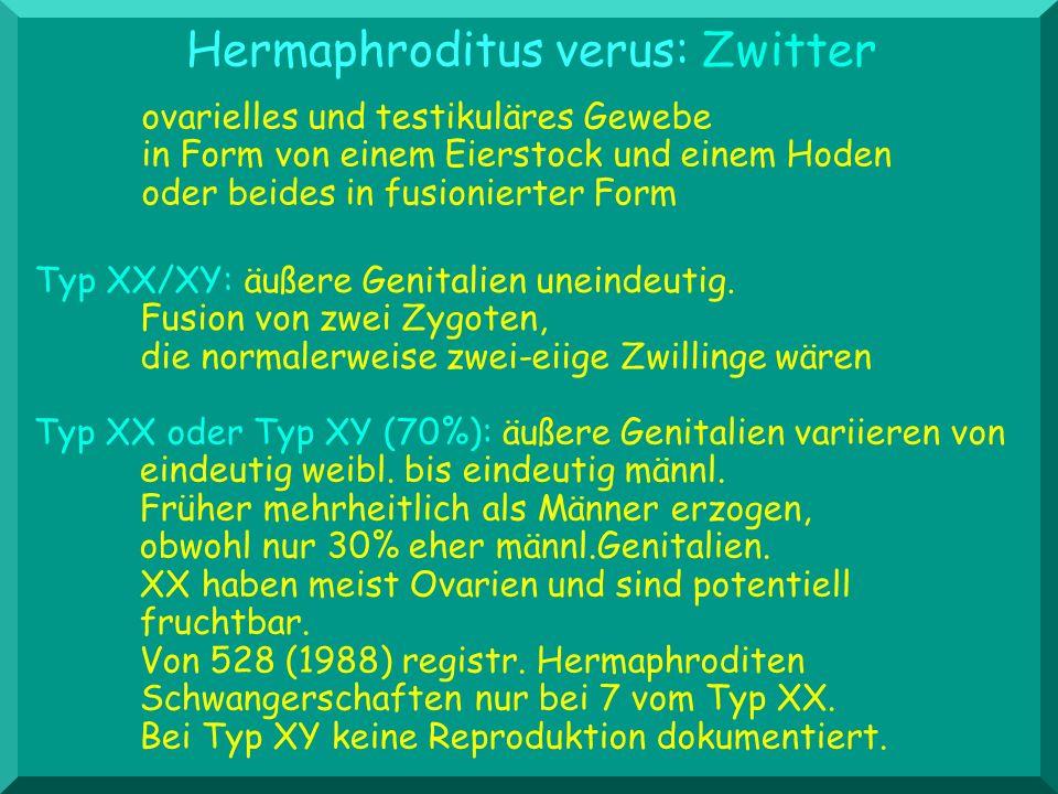 Hermaphroditus verus: Zwitter
