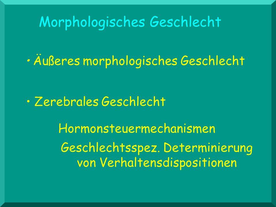 Morphologisches Geschlecht