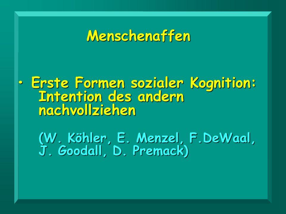 • Erste Formen sozialer Kognition: