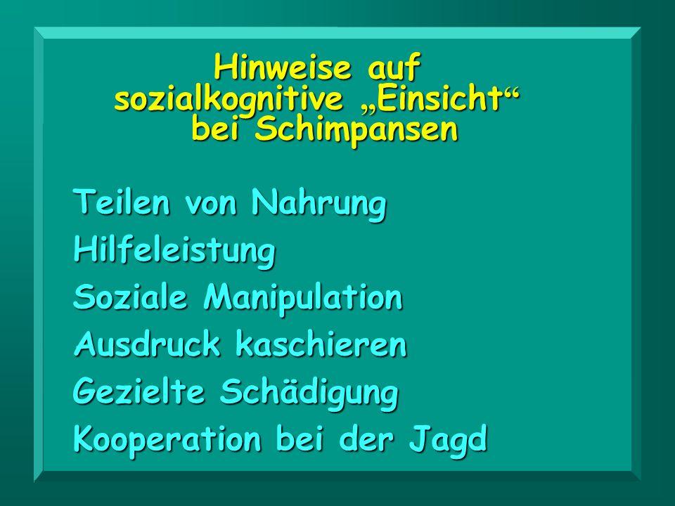 """sozialkognitive """"Einsicht"""