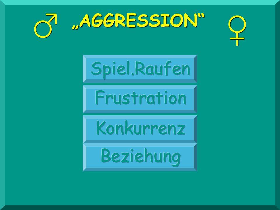 """""""AGGRESSION Spiel.Raufen Frustration Konkurrenz Beziehung"""
