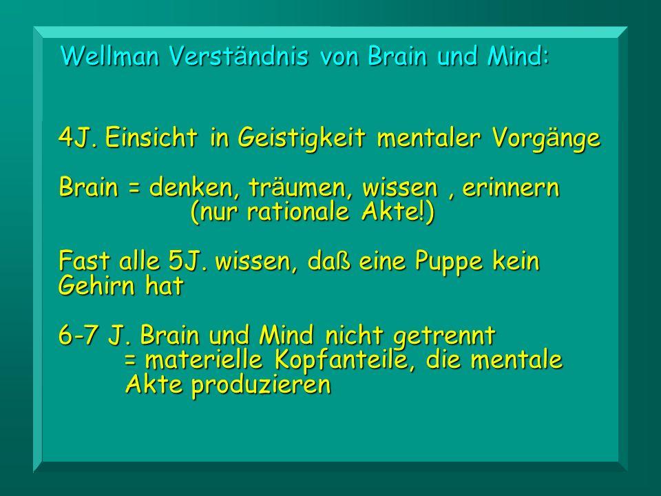Wellman Verständnis von Brain und Mind: